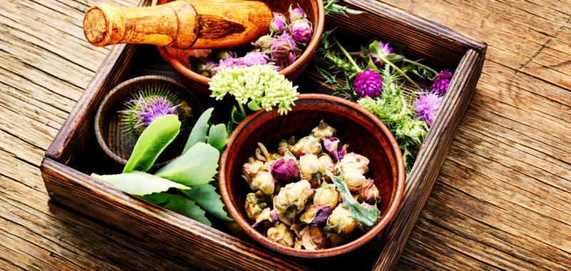 set-healing-herbs