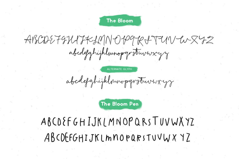 the-bloom-project
