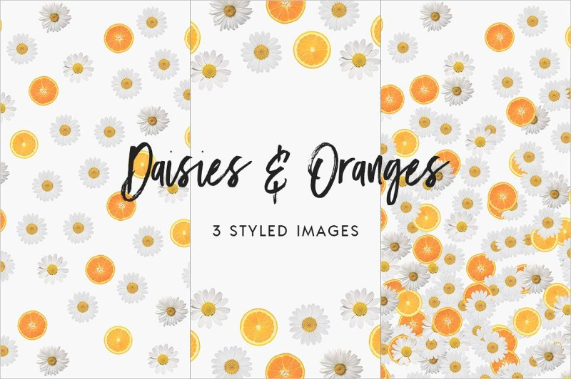 daisies-and-oranges-styled-stock