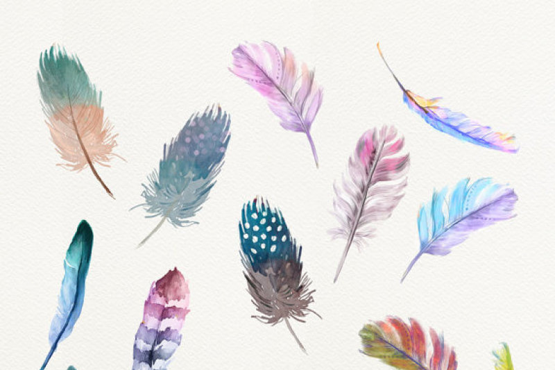 watercolor-feathers