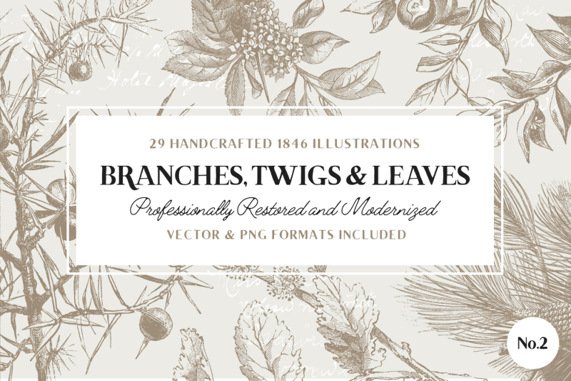 29-branches-twigs-and-leaves-no-2