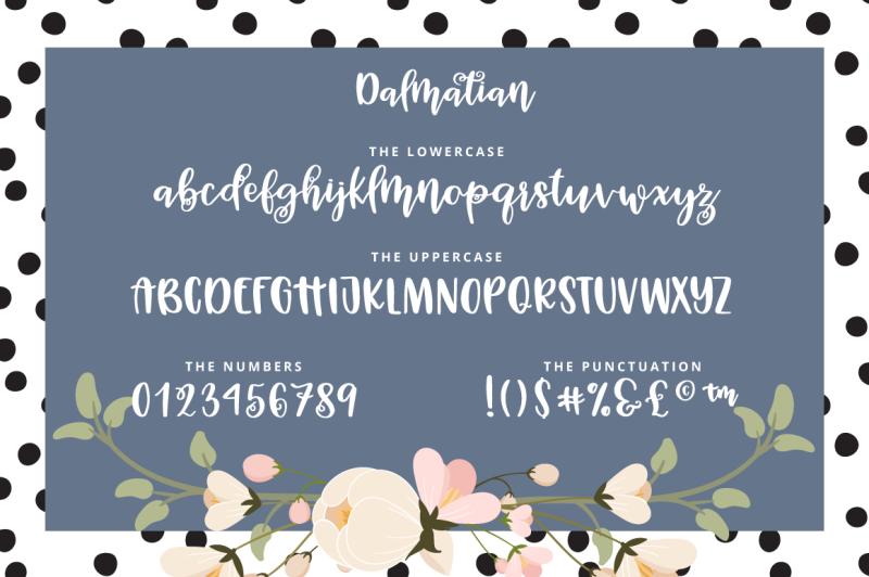 dalmatian-a-modern-hand-lettered-bouncy-script-font