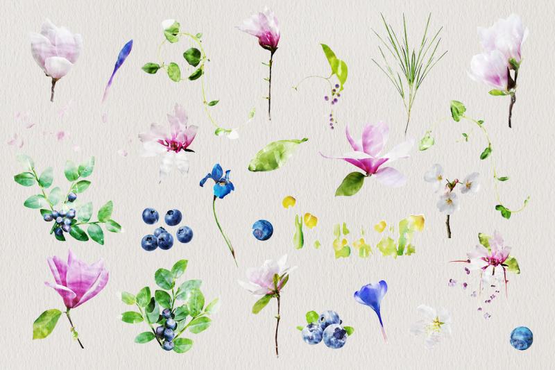 watercolor-flowers-magnolias