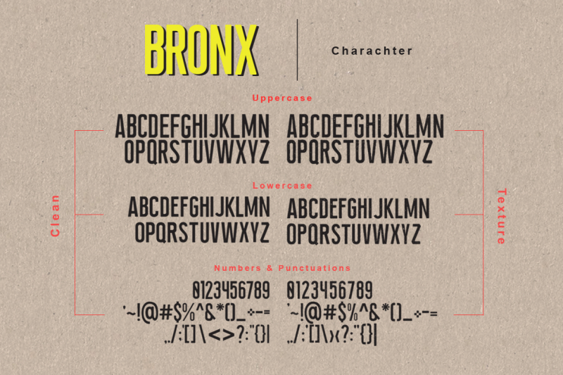 newyork-bronx-sans-script-font-duo