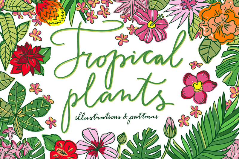 tropical-plants