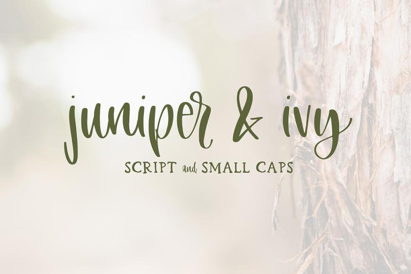 juniper-and-ivy