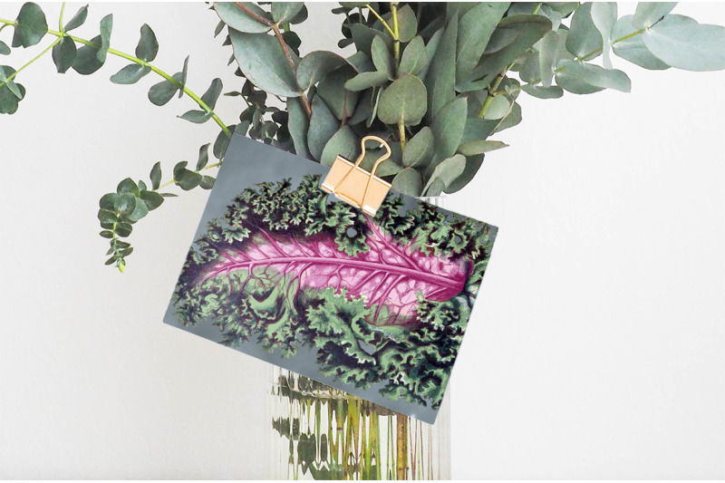 leaves-clipart-vintage
