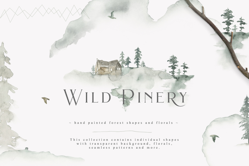 wild-pinery-collection