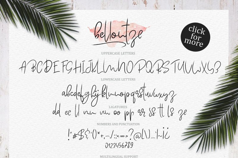 bellontze-textured-script-and-swashes