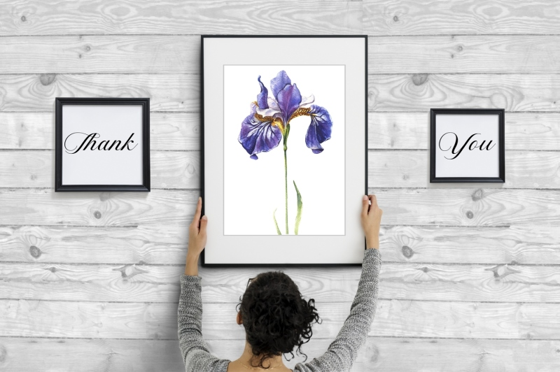 blue-irises-watercolor-painting-set