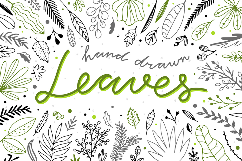 hand-drawn-leaves