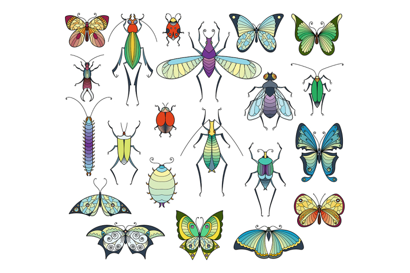 colored-insects-isolate-on-white-bugs-and-butterflies-vector-pictures