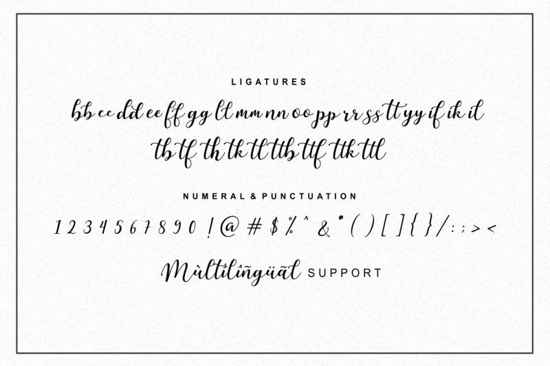 martinesse-script-font