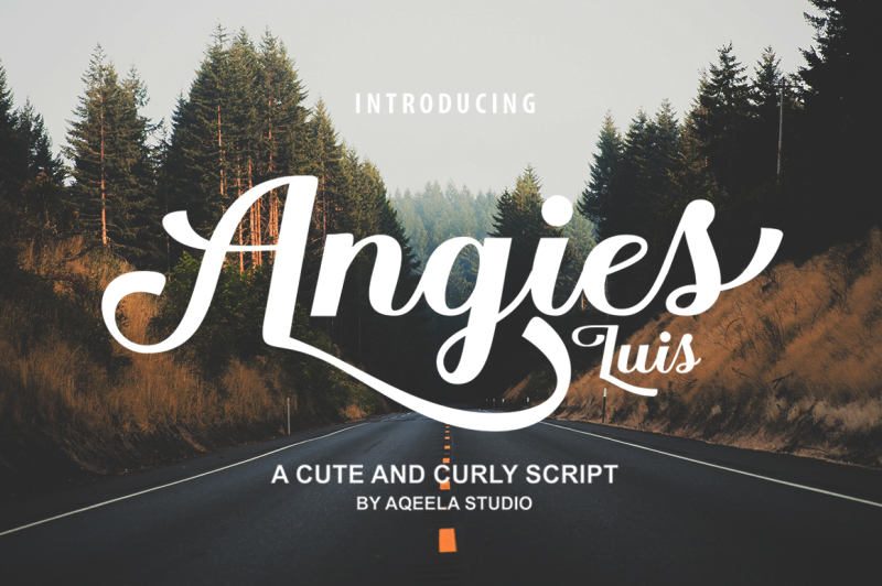 Aqeela Studio Fonts Collection By TheHungryJPEG