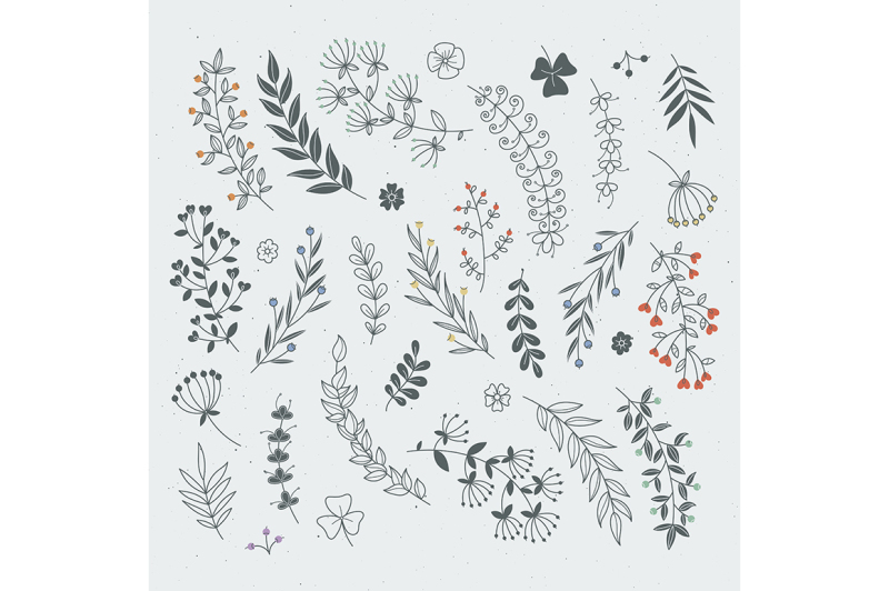 decorative-floral-elements-for-design-projects