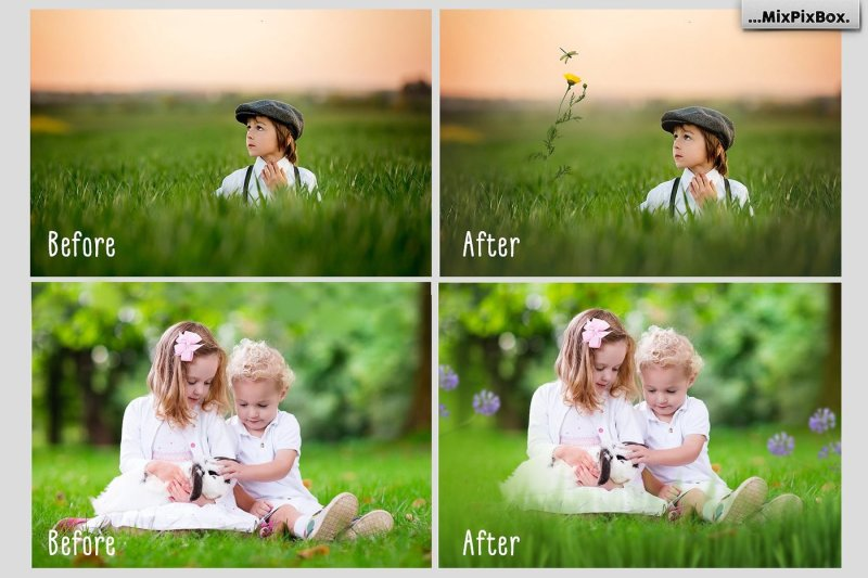 grass-and-flowers-photo-overlays