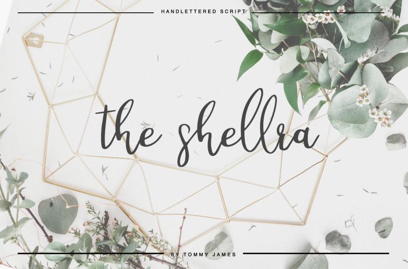 the-shellra