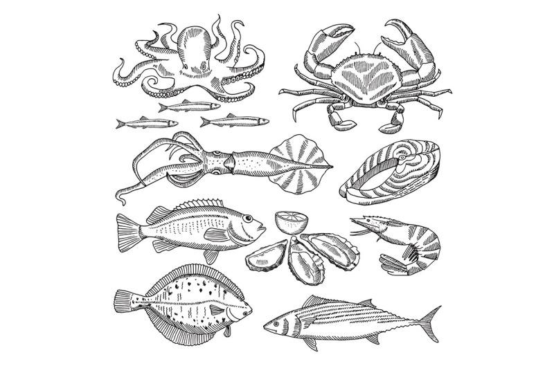 hand-drawing-vector-illustrations-of-sea-food-for-restaurant-menu