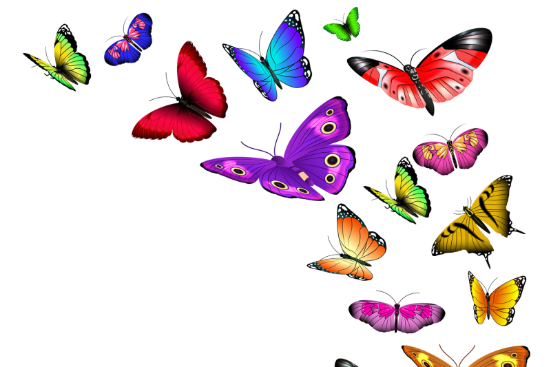 vector-background-with-flying-butterflies