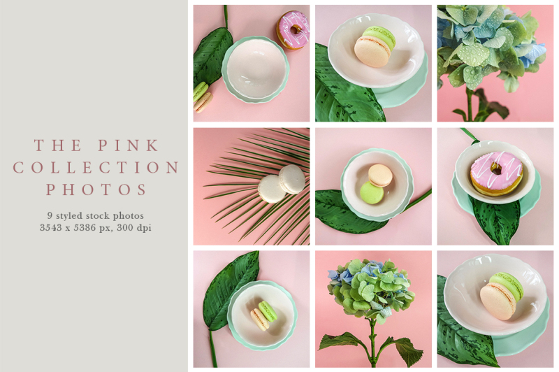 the-pink-collection-photos