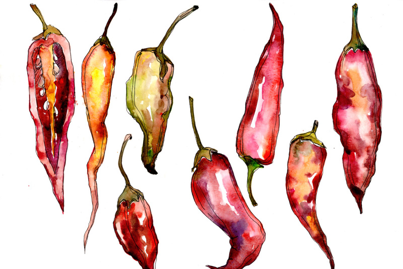 red-pepper-vegetables-png-watercolor-set-nbsp