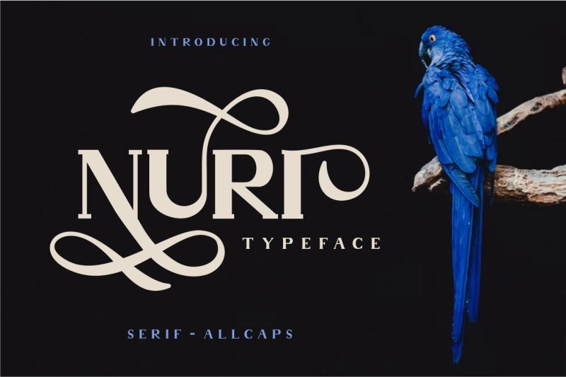 nuri-typeface