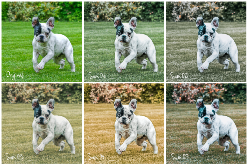 sam-lightroom-desktop-and-mobile-presets