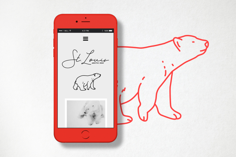 42-detailed-animal-icons