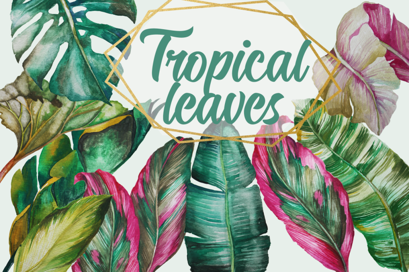 tropical-greenery-tropical-leaves