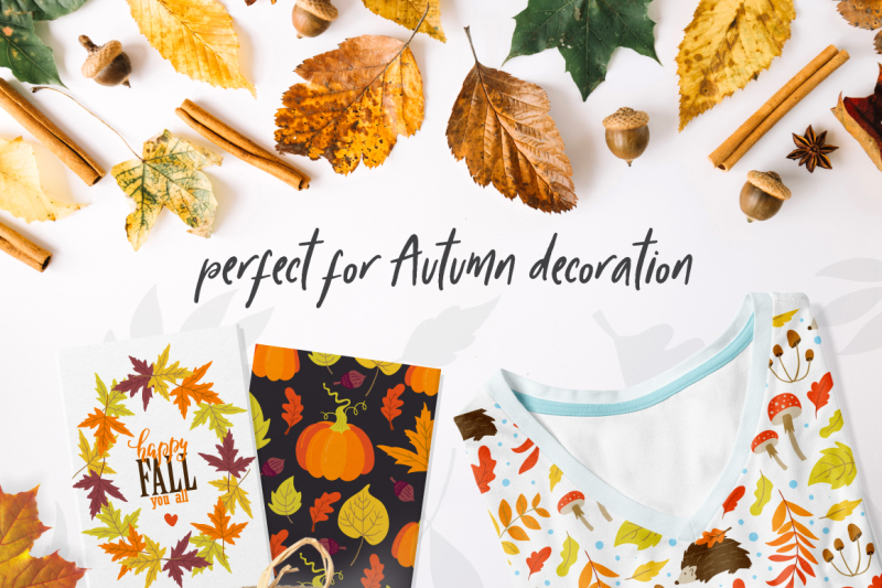 autumn-vibes-collection