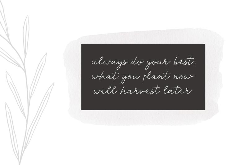 harvest-a-handwritten-script-font