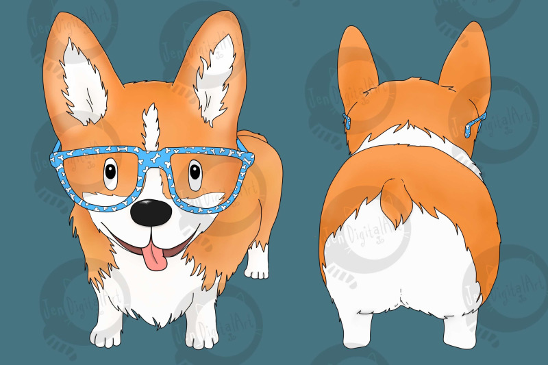 corgi-dog-with-glasses-front-and-rear-view-png-jpeg