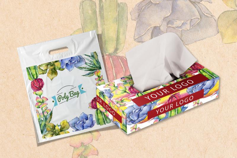 succulents-png-watercolor-set-nbsp