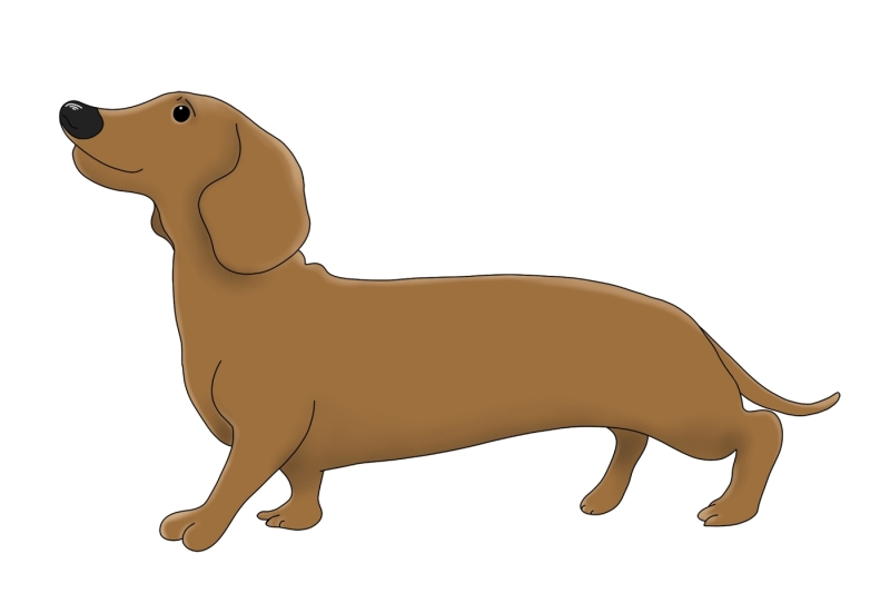 dogs-8-images-png-clip-art-illustrations