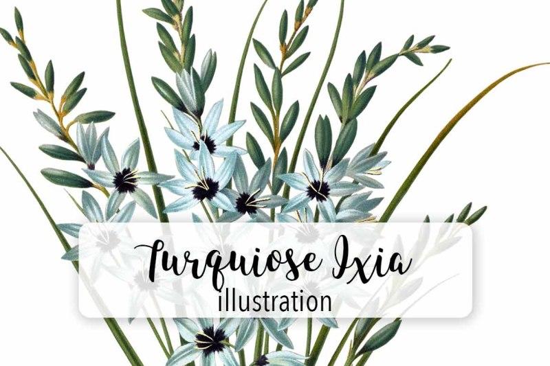flowers-vintage-turquiose-ixia