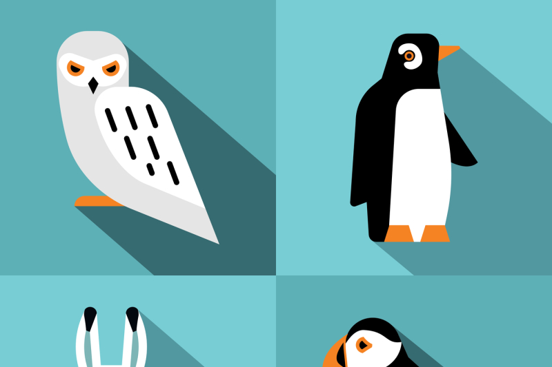 polar-animals-in-flat-style-with-long-shadow