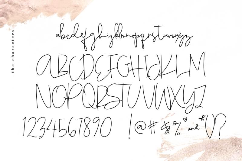 chic-a-handwritten-script-font
