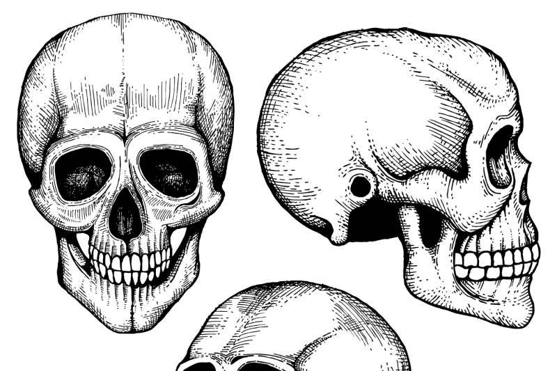 hand-drawn-vector-death-scary-human-skulls-collection