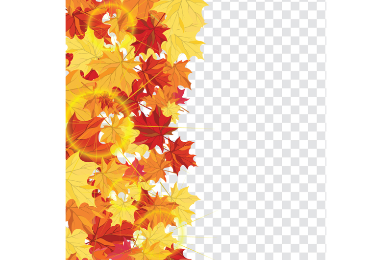 maple-leaves-on-transparency-grid