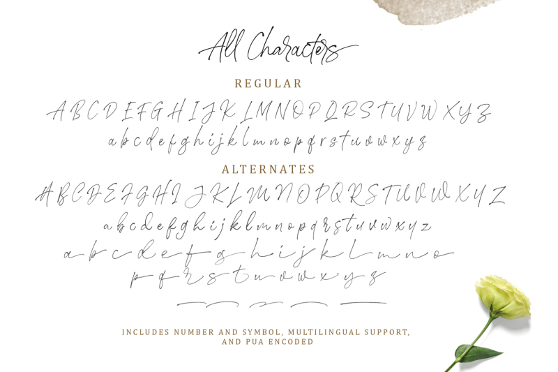 stephen-and-gillion-signature-script
