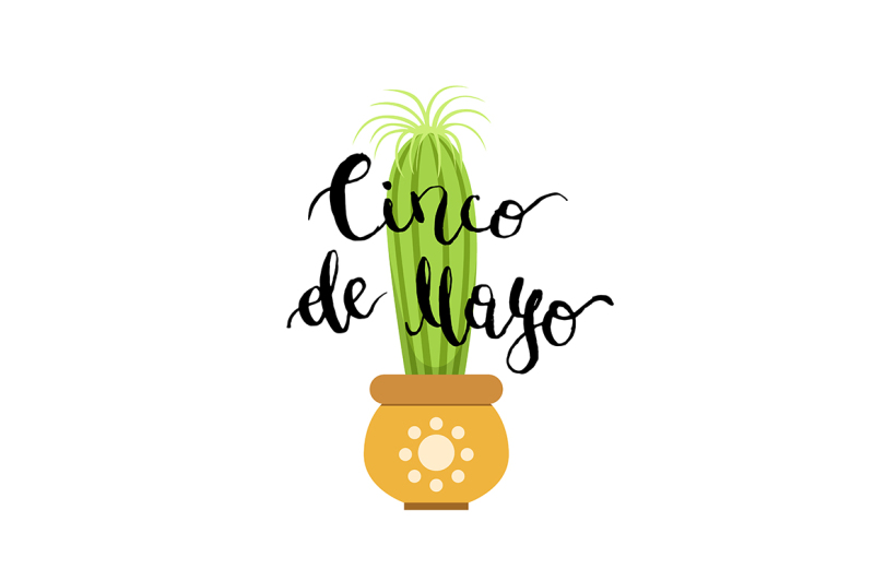 vector-illustration-with-cactus-in-pot-and-cinco-de-mayo