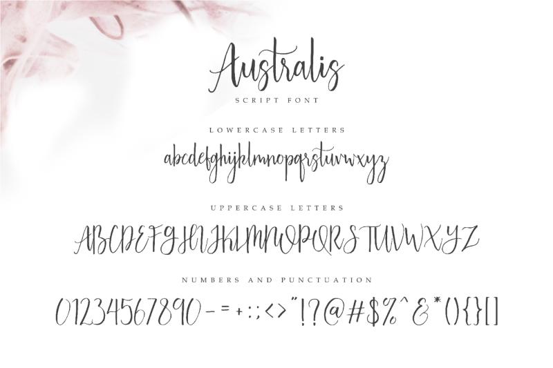australis-brush-script