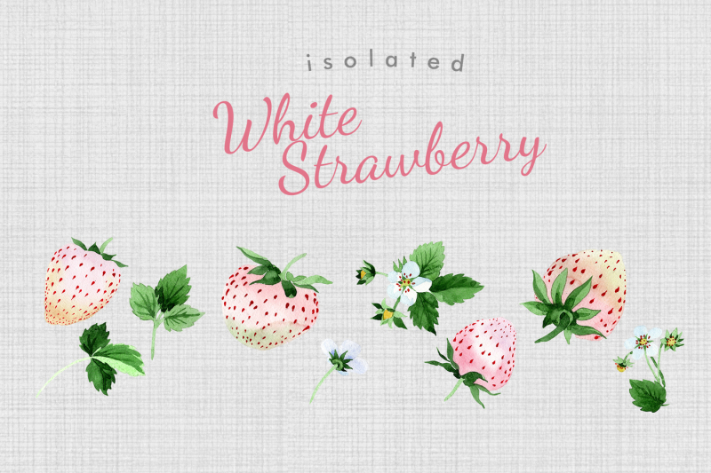 white-strawberry-png-watercolor-fruit-set