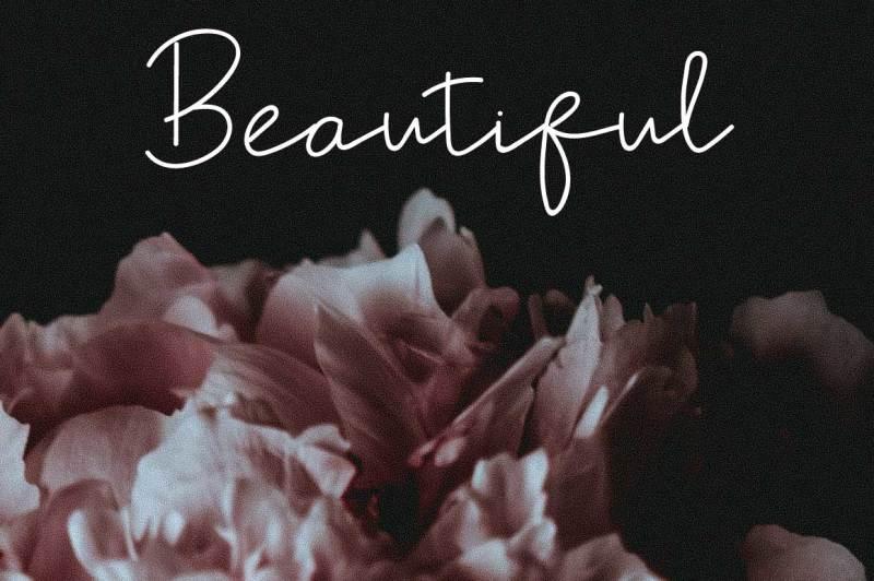 shel-fodor-script-font-by-watercolor-floral-designs