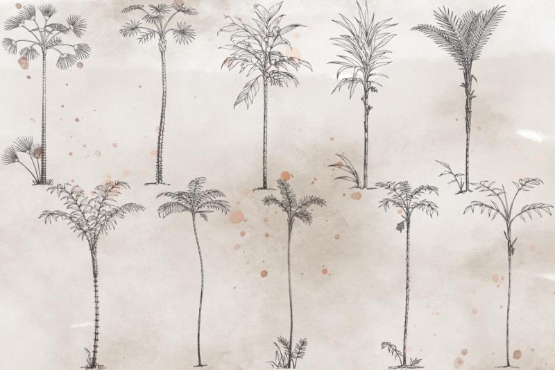 vintagevectorized-palms-clipart