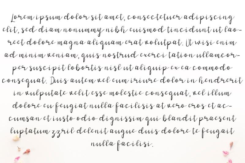 stark-niche-script-font-by-watercolor-floral-designs
