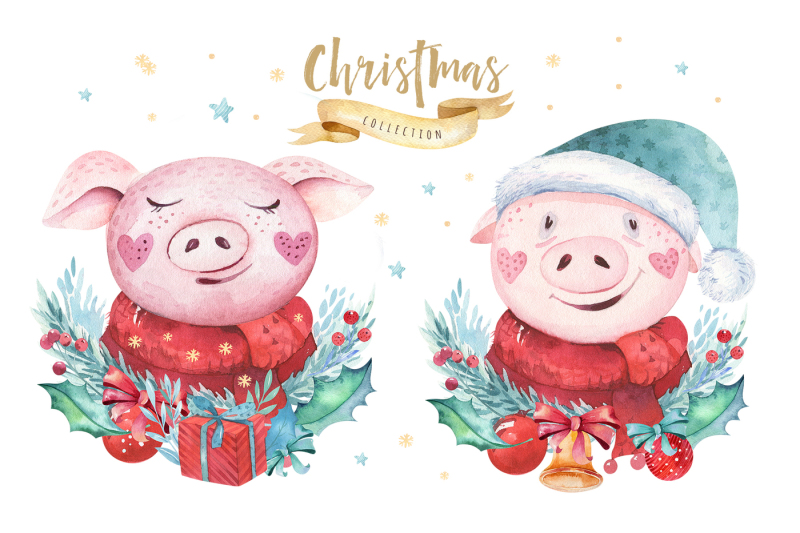 oink-2019-this-is-my-year