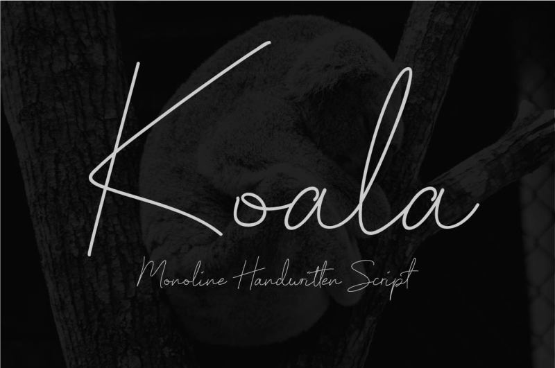 koala-monoline-handwritten-script