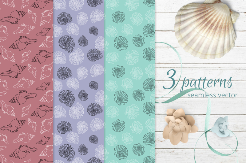 seashell-collection-of-patterns