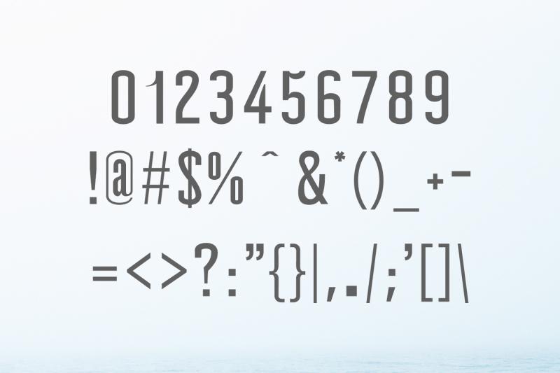 wellston-modern-sans-serif-font